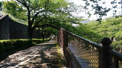 恩田川脇の通路です。