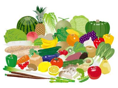 栄養になる食品