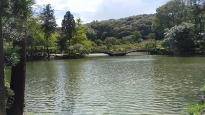 薬師池公園