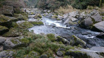 雄川の滝下流