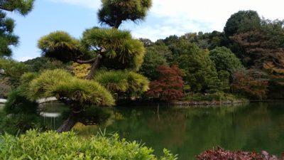 薬師池公園4