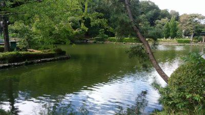 薬師池公園3