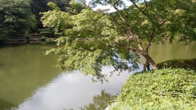 薬師池公園7