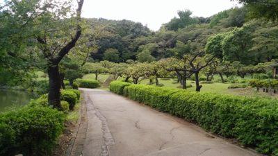 薬師池公園9