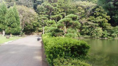 薬師池公園10