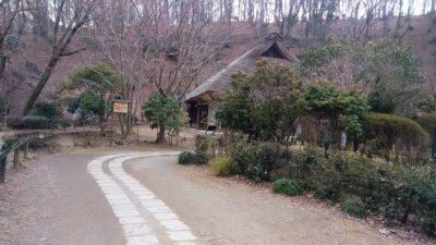 薬師池公園12