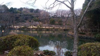 薬師池公園11
