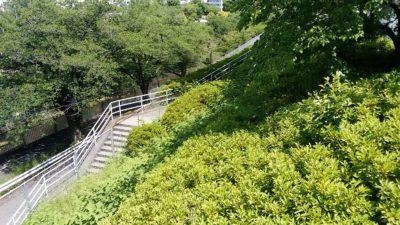 恩田川沿いの階段