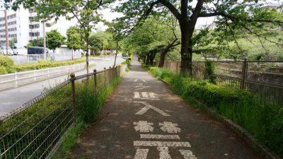 恩田川沿い